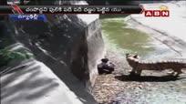 印度德里动物园 男子误入虎园遭生食