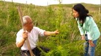 80岁老人杨忠文让大山再添绿色