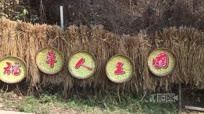 四川农民废物变宝 做出艺术品供参观