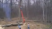 伐木工锯树杈不慎被回头棒高空击落