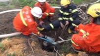 500斤水牛失足落枯井 消防员灌水3吨救起