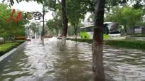 【拍客】实拍河北燕郊暴雨后积水严重 进入看海模式