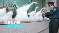 杭州保安下雪天堆出个动物园