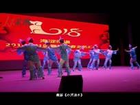 北京市海淀舞蹈迎春汇演集锦
