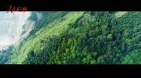 【晒·身边的变化】贵州北大门的最美守绿人 青山绿水守护神