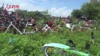 合肥共享单车遭遇杂草掩埋