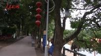 《大美中国看壮丽河山》浙江:古埠名镇履坦