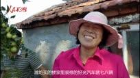 中国农民丰收节!大妈种38亩大枣20年致富