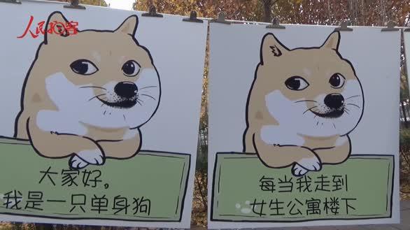 """高校单身青年发起""""反击"""" 女生楼前挂""""文明恋爱倡导书"""""""