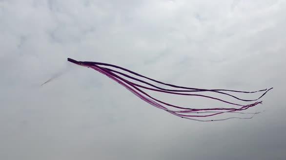 厉害!浙江一5岁小男孩将8米风筝放上天