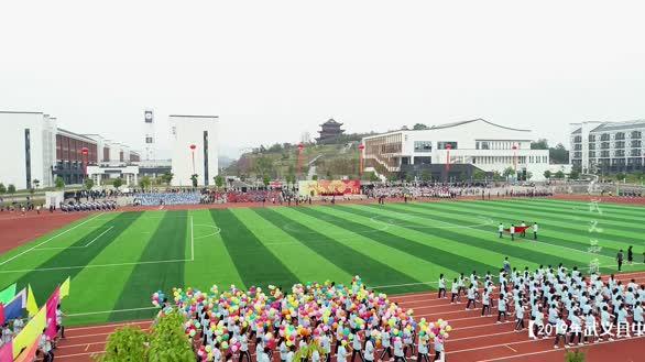 【航拍】2019年武义县中小学田径运动会开幕式