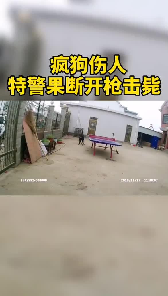 安徽霍邱:疯狗伤人,特警果断开枪击毙