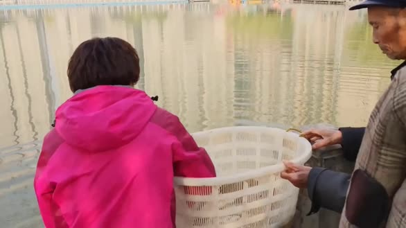 这不合适吧:大妈们湖边买鱼放生,多名男子在放生现场捞鱼!