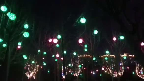 彩灯亮 年味浓 淄博各区县和景区春节亮化彩灯亮起