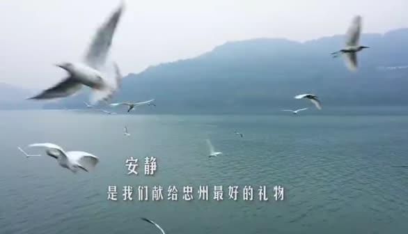 重庆市忠县疫情防控最新宣传片