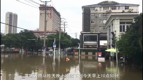 强降雨致小区积水 河鱼大摇大摆游进居民区