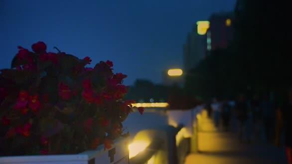 流光溢彩!辽河公园的夜景美翻了!