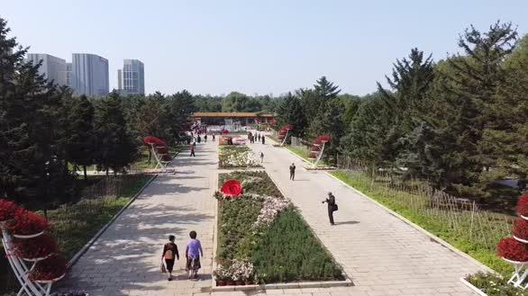 沈阳北陵公园花团锦簇