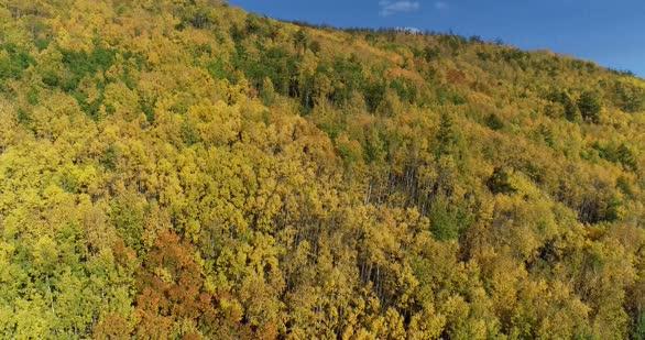 内蒙古大兴安岭的秋天色彩斑斓