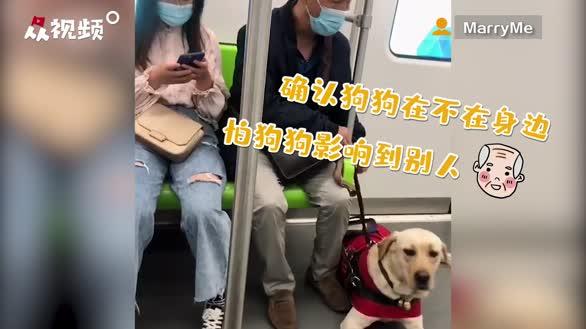 治愈!爷爷牵导盲犬暖心互动,狗狗依偎在旁网友直呼很有安全感