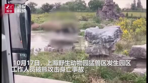 探访上海野生动物园:猛兽区已关闭 现场救援视频曝光