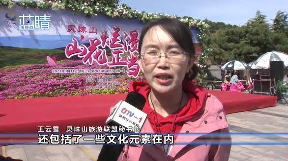 2021灵珠山踏青祈福赏花节今日开幕