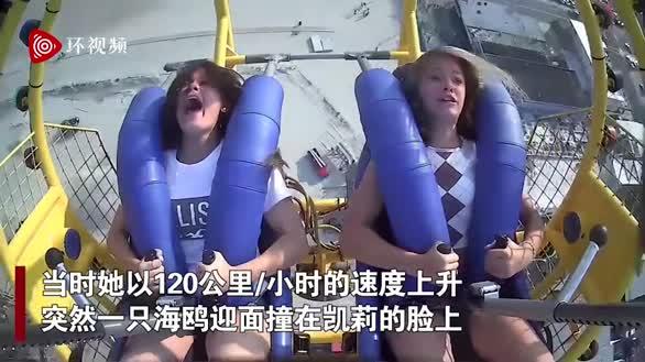 戏剧性一幕!美国13岁女孩玩急速弹弓撞上海鸥